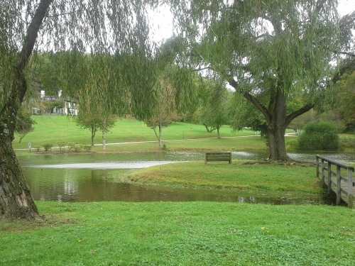 The Willows Radnor Township.jpg